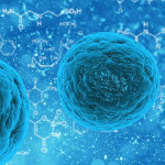 Ce-sunt-celulele-stem