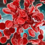Celule-stem-hematopoietice
