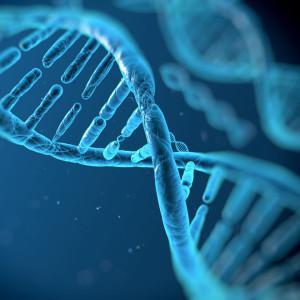 Tipuri-de-celule-stem