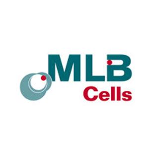 Banca de celule stem MLB Cells